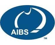 AIBS - logo